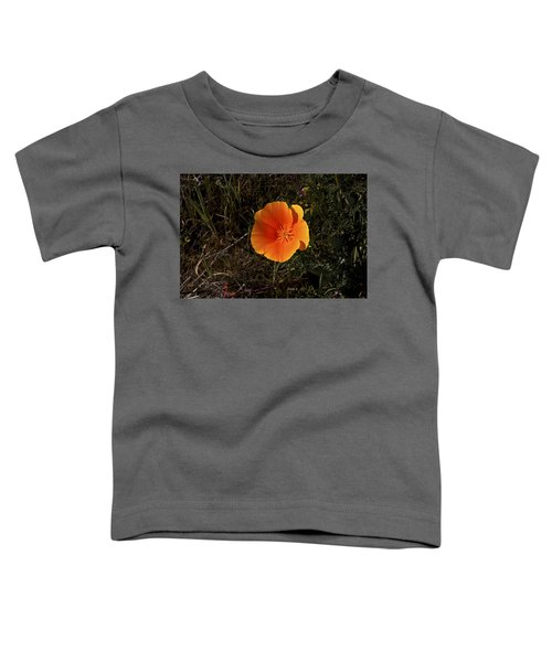 Orange Toddler T-Shirt