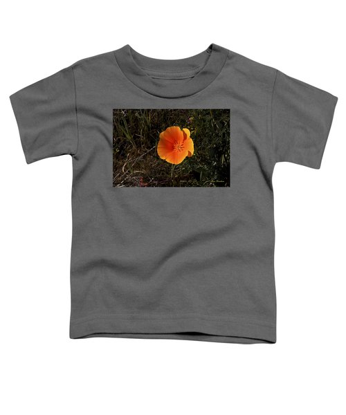 Orange Signed Toddler T-Shirt