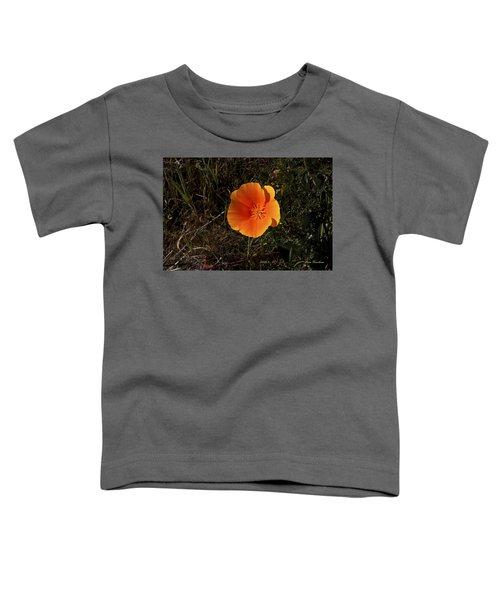 Orange Signed Toddler T-Shirt
