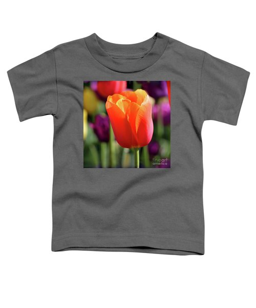Orange Tulip Square Toddler T-Shirt