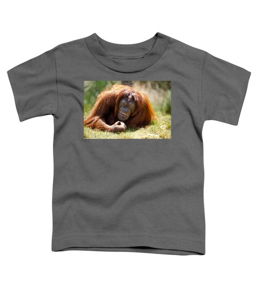 Orangutan In The Grass Toddler T-Shirt by Garry Gay