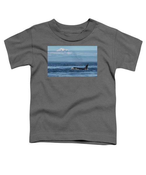 Orca Male With Mt Baker Toddler T-Shirt