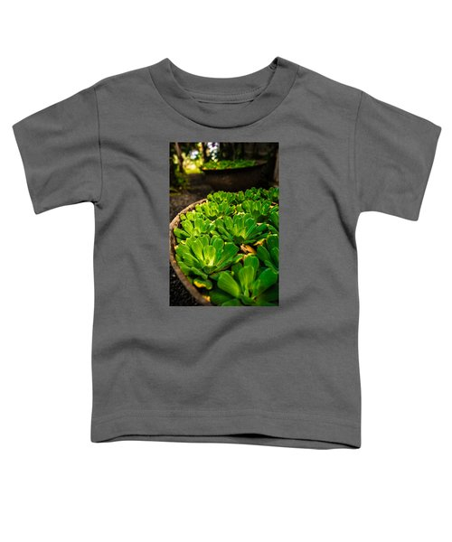 Orchid Pond Toddler T-Shirt