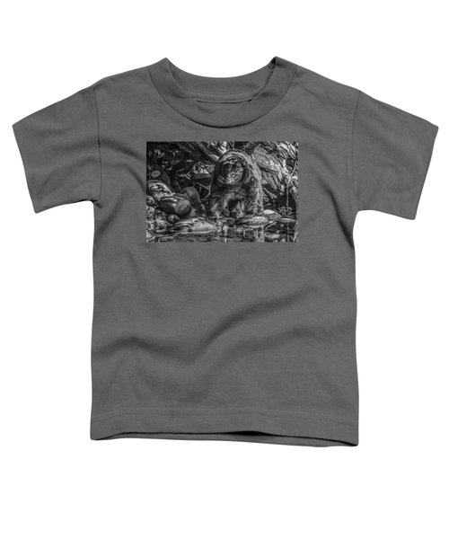 Oservant Black Bear  Toddler T-Shirt