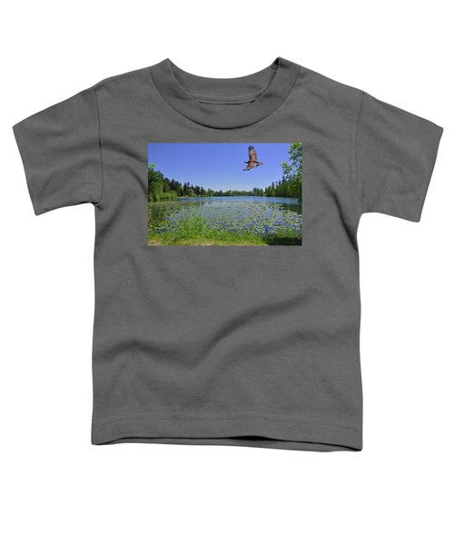 Osprey Fishing At Wapato Lake Toddler T-Shirt