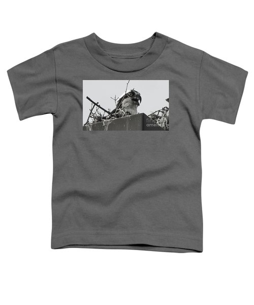 Osprey In Nest Toddler T-Shirt