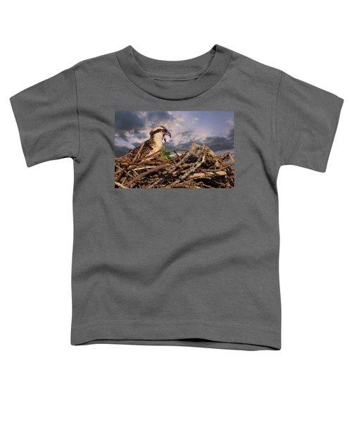 Osprey Talk Toddler T-Shirt