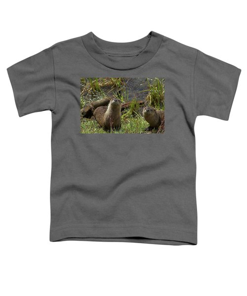 Otters Toddler T-Shirt