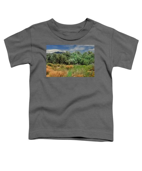 Out On The Mesa 1 Toddler T-Shirt