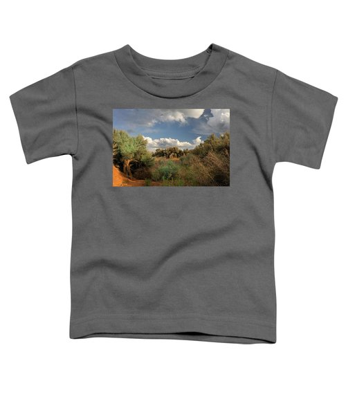 Out On The Mesa 4 Toddler T-Shirt