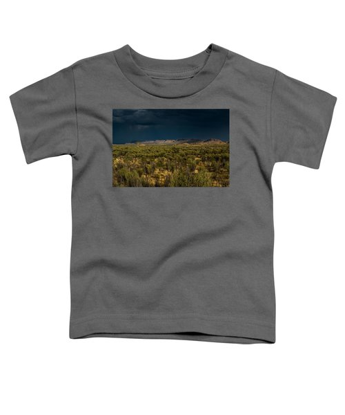 Outback Storm Toddler T-Shirt