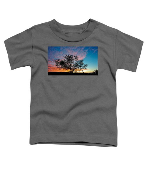 Outback Sunset Pano Toddler T-Shirt