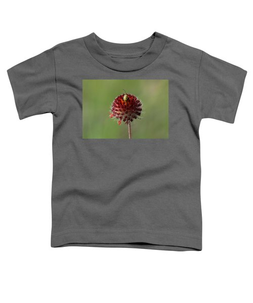 Over The Top Toddler T-Shirt