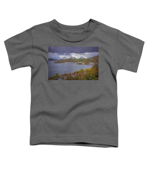 Oxbow Bend Fall Snowfall Toddler T-Shirt