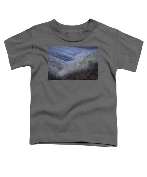 Ozarks Trees #4 Toddler T-Shirt