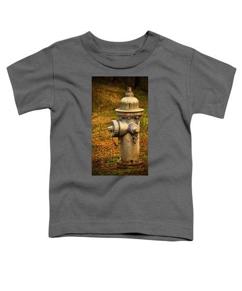 Painted Fireplug Toddler T-Shirt