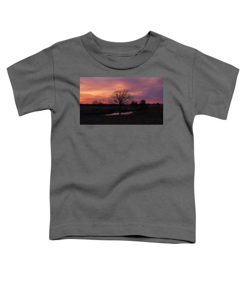 Painted Sky Toddler T-Shirt