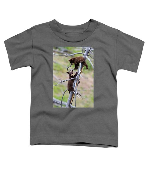 Pair Of Bear Cubs In A Tree Toddler T-Shirt