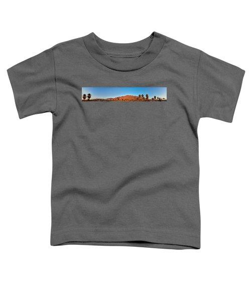 Palm Springs Sunrise Toddler T-Shirt