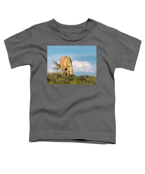 Palomino Wild Stallion In The Evening Light Toddler T-Shirt