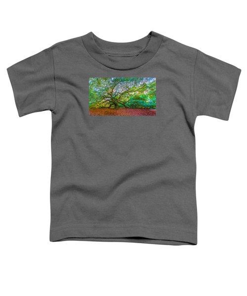 Panoramic Angel Oak Tree Charleston Sc Toddler T-Shirt