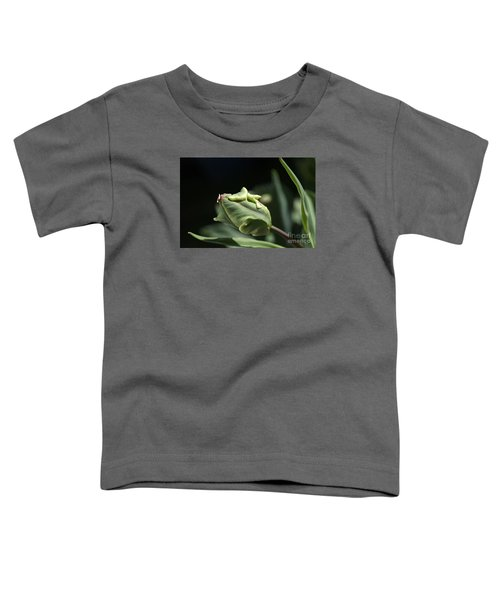 Parrot Tulip Bud Toddler T-Shirt