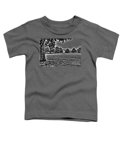 Pasture Toddler T-Shirt