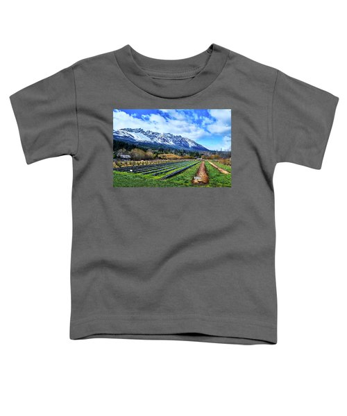 Landscape With Mountains And Farmlands In The Argentine Patagonia Toddler T-Shirt