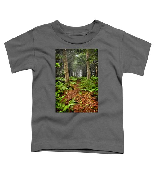 Path In The Ferns Toddler T-Shirt