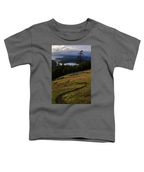 Path Of Enlightenment Toddler T-Shirt
