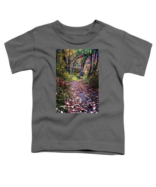 Path Of Leaves Toddler T-Shirt
