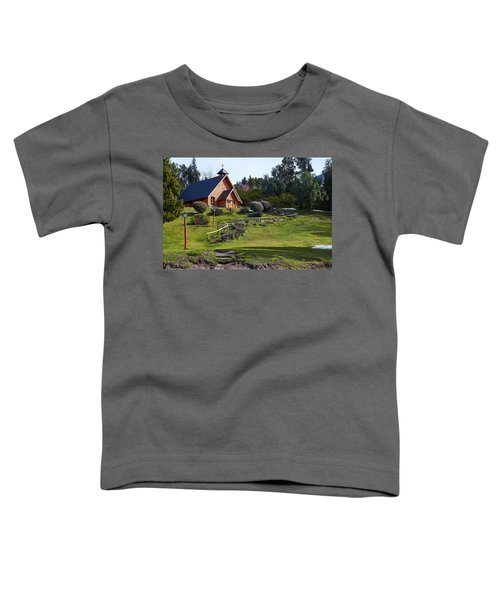 Rustic Church In The Argentine Patagonia Toddler T-Shirt