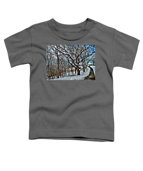 Path To The Lookout Toddler T-Shirt