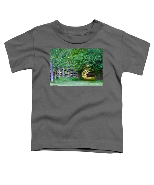 Pathway To A Sunny Summer Morning  Toddler T-Shirt
