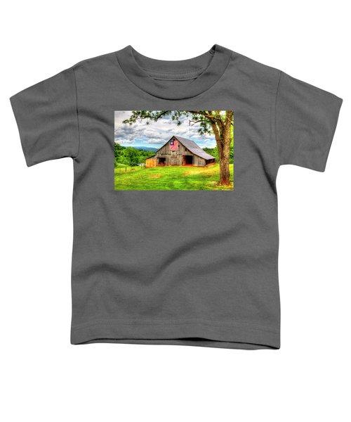 Patriotic Emblem Toddler T-Shirt