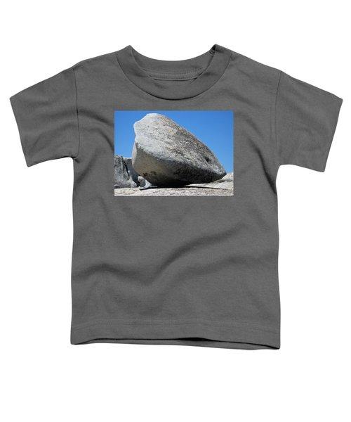 Pay The Stone - Bald Rock 2016 Toddler T-Shirt