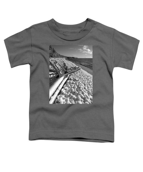 Pebble Beach Winter Toddler T-Shirt