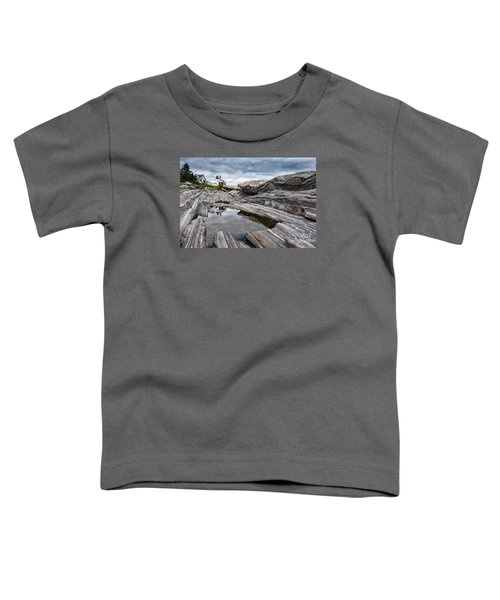 Pemaquid Point Lighthouse Toddler T-Shirt