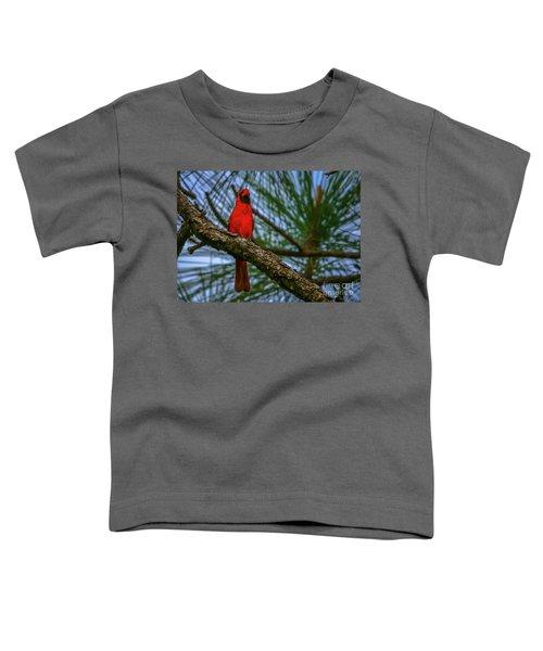 Perched Cardinal Toddler T-Shirt