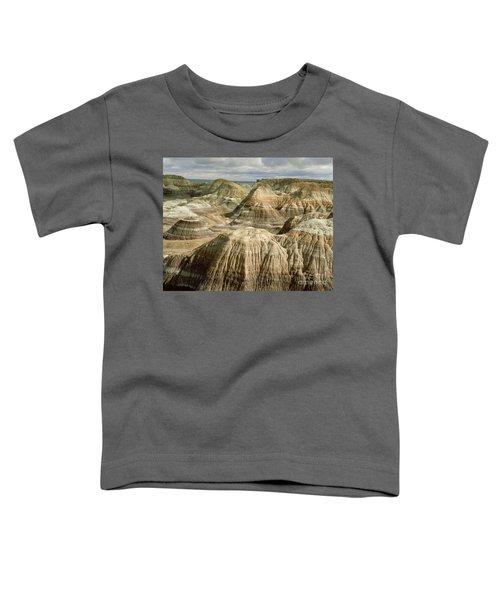 Petrified Forest, Arizona Toddler T-Shirt