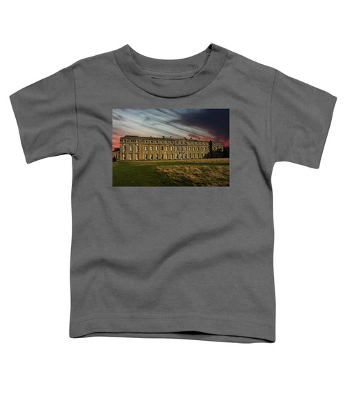 Petworth House Toddler T-Shirt by Martin Newman