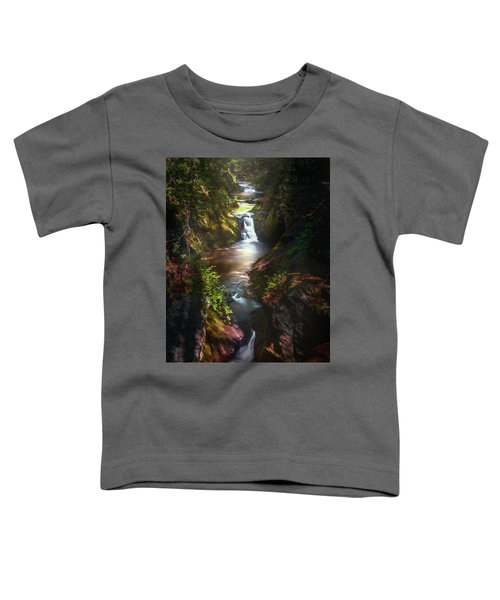 Pewitts Nest Toddler T-Shirt