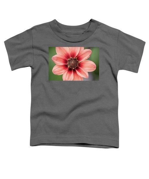 Pgc Dahlia Toddler T-Shirt