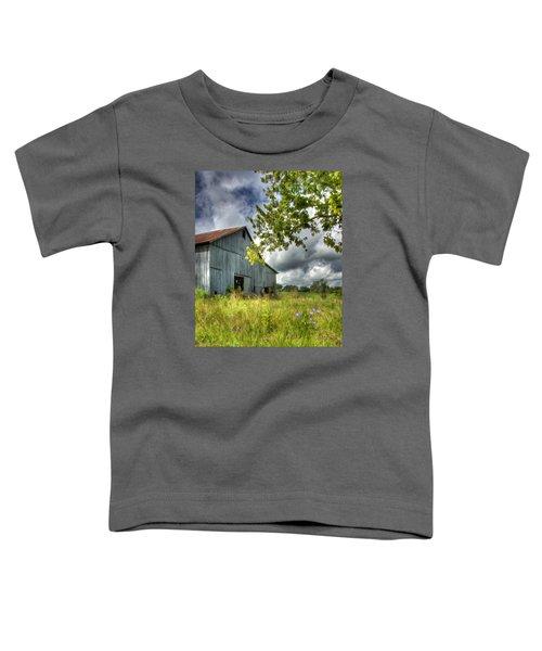Phillip's Barn #2 Toddler T-Shirt