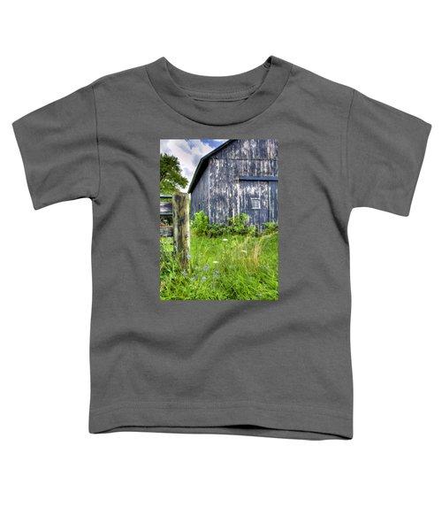 Phillip's Barn #3 Toddler T-Shirt