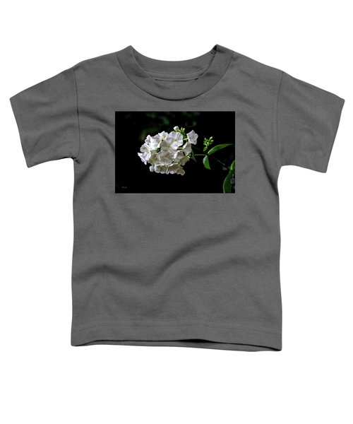 Phlox Flowers Toddler T-Shirt