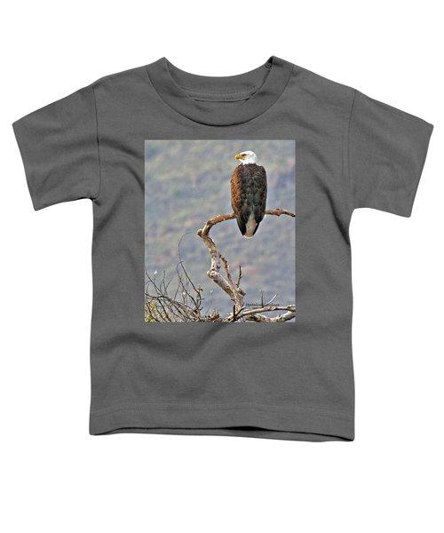 Phoenix Eagle Toddler T-Shirt