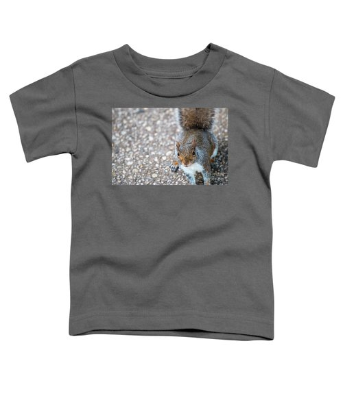 Photo Of Squirel Looking Up From The Ground Toddler T-Shirt