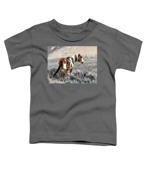 Picasso - Wild Mustang Stallion Of Sand Wash Basin Toddler T-Shirt