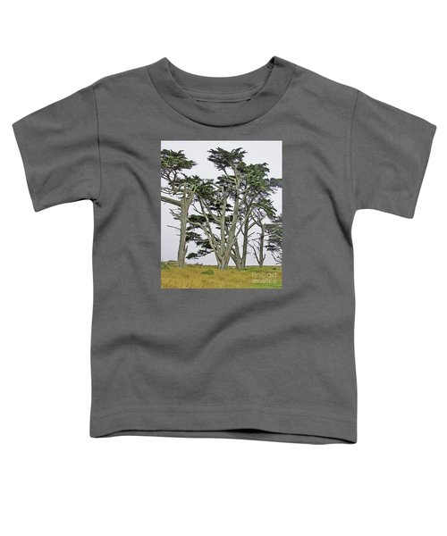 Pierce Pt. Study Toddler T-Shirt